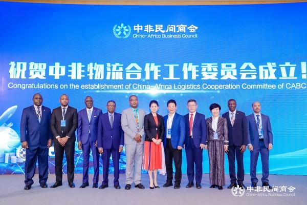 中非民间商会副会长:期待后疫情时代中非物流互联互通打开新局面